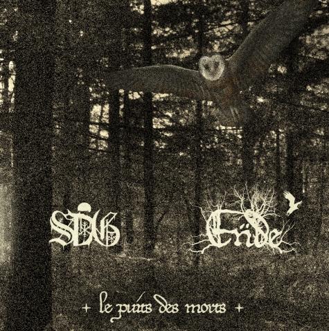LE PUITS DES MORT cover artwork 2016